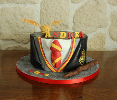 Gâteau décoré thème Harry Potter - Gryffondor