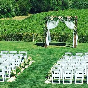 Zenith vineyard is such a beautiful sett