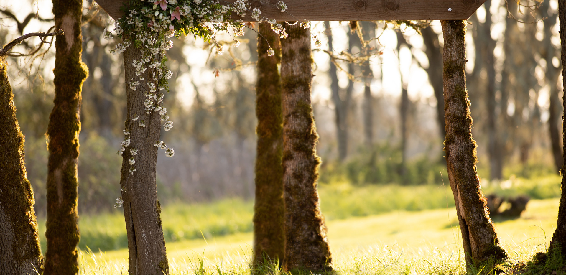 Arbor flowers.jpg