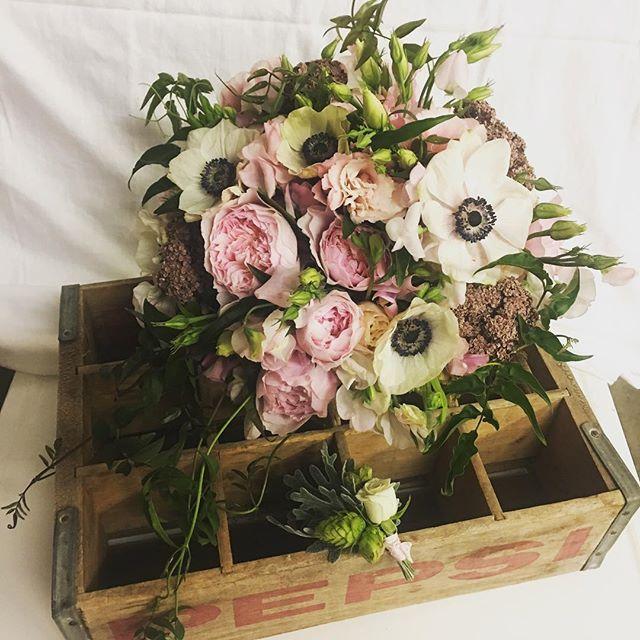 #distinctivedesignsbydenice #oregonweddingflowers #zenithvineyardwedding