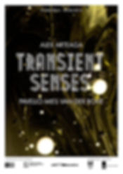 transient senses poster 3