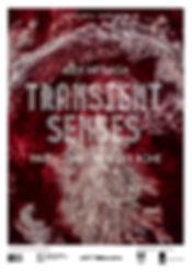 transient senses poster 1