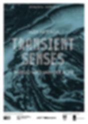 transient senses poster 4