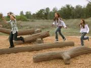 UPC Parks Forked Log