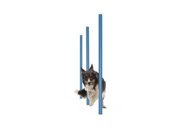 MREC Dog Agility Weave Poles