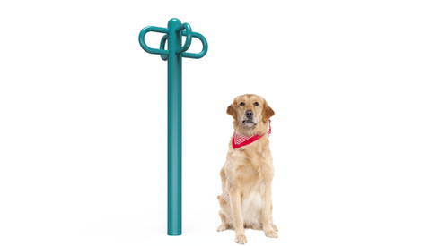 MREC Dog Leash Rack