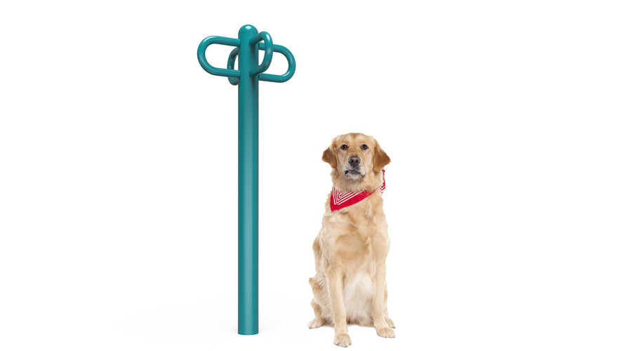 MREC Dog Leash Rack