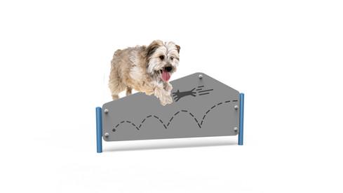 MREC Dog Pentagon Hurdle