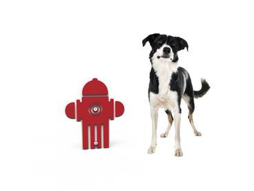 MREC Dog Fire Hydrant