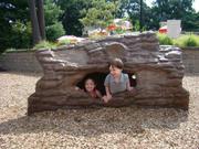 UPC Parks Racoon Log