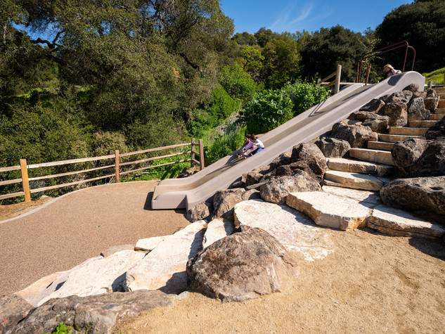 Taylor Mountain Slide