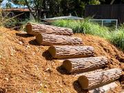 UPC Parks Log Steppers