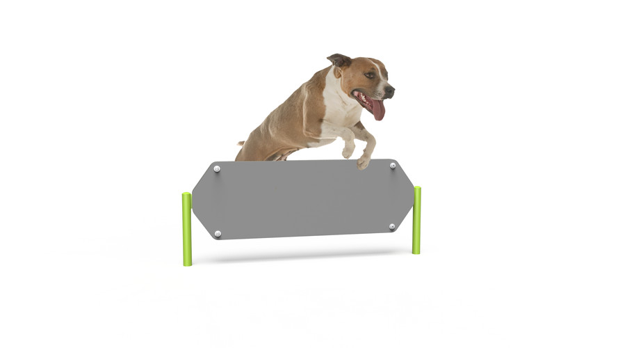 MREC Dog Hexagon Hurdle