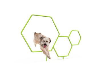 MREC Dog Triple Hoop