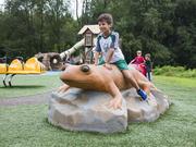 UPC Parks Frog Climber