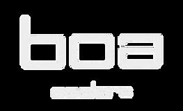 BOA LOGO 2021_edited.png