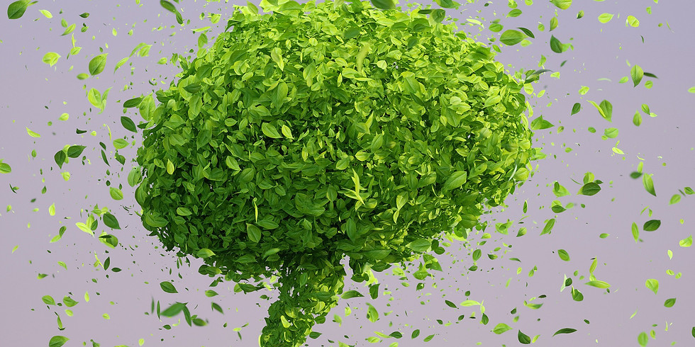 sanu - Neurosciences de la transition écologique