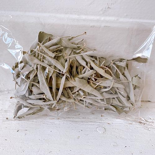 Organic White Sage