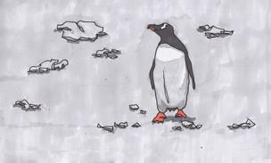 Pingüino #02, Antártica, 2015