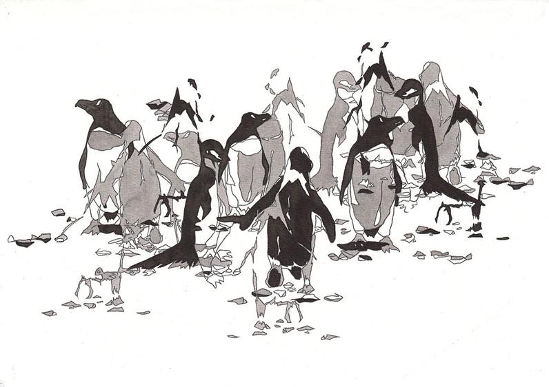 Los pinguinos de la Antartica, 2016 - Desenho vencedor no Concurso Internacional para o calendário artístico da Hahnemühle de 2017
