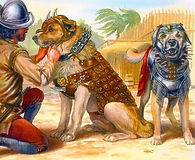 Dogs of the conquest 1.jpg