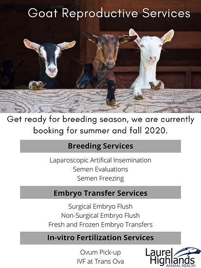 Goat Repro Services.jpg