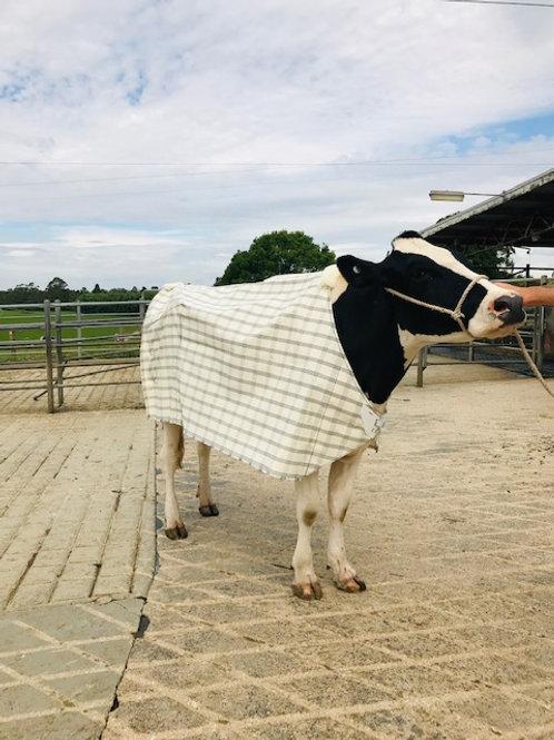 ICU Small Animal Rugs Holstein Paddock Rug