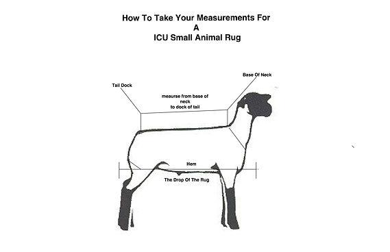 Lamb Rugs Measurements