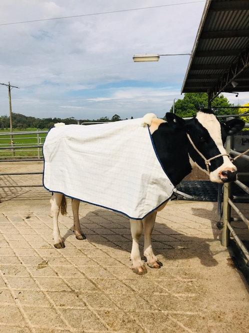 ICU Small Animal Holstein Show Rug