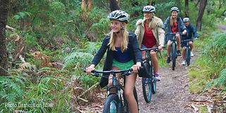 Mountain-Bike-Destination-NSW.jpg