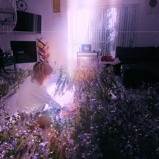 Living Room Garden