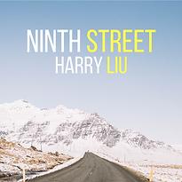 ninth street album art