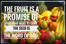 GOD PROMISES FRUIT THAT PROSPERS