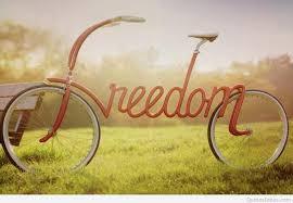 THE BELIEVER'S FREEDOM