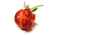 ugly strawberry header.jpg