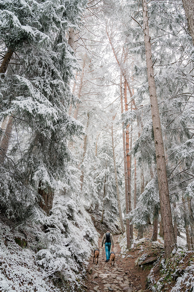 High on Snow