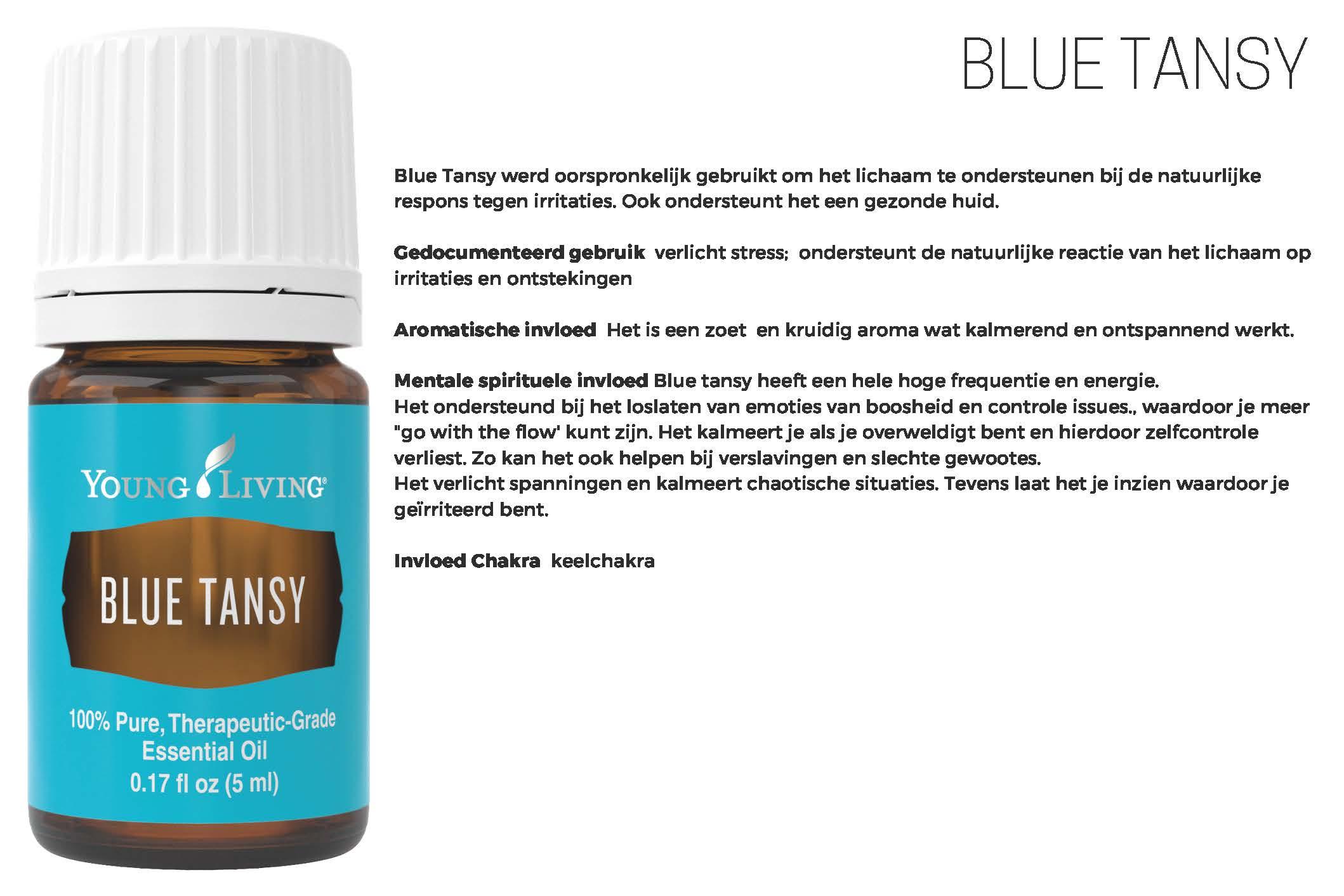 Blue Tansy