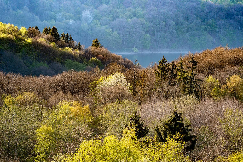 The Eifel