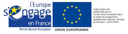 FSE logo.png