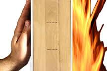 legno fuoco.jpg