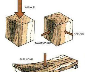10 buone ragioni - il tetto in legno -