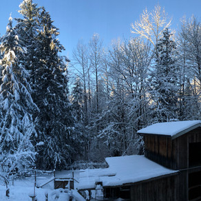 Hello, Winter!