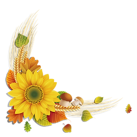 Sunflowers-png-715x715.png