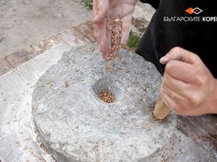 Камъкът - вечния спътник на българина