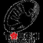 Hong Kong Touch Association.png