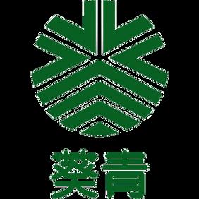 Kwai Tsing