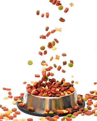 Pet food falls into the bowl for feeding