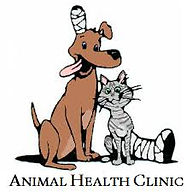 animal health clinic bourne.jpg