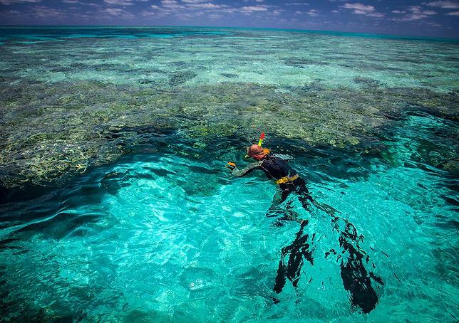 swinas-reef-fishing-charters.jpg