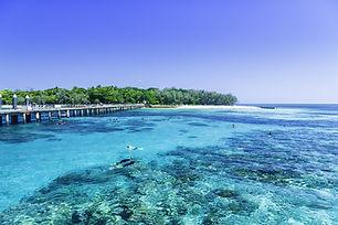 great-barrier-reef-cruises.jpg